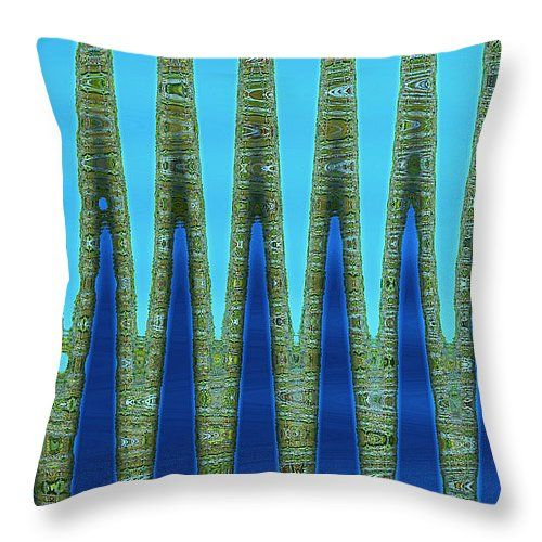 Photography Throw Pillows